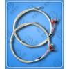 WZPQ2-E32-10双支铂热电阻