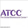 ATCC10206 蕈状芽孢杆菌