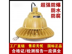 HRD92-20b防爆高效节能LED灯(ⅡC)HRD92-20w