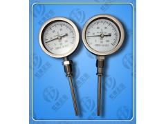 WTYY-1031-Z防震型压力式温度计