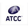 ATCC CRL-8885(WIL2-S)细胞|ATCC来源