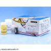 尼帕病毒核酸PCR检测试剂盒