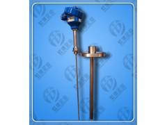 防爆热电阻WZP2-441