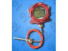 虹德防爆数显SXM-246R-B温度计