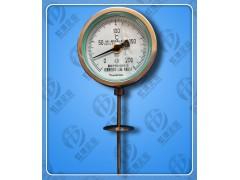 防震型远传温度计WTYY-1031-Z