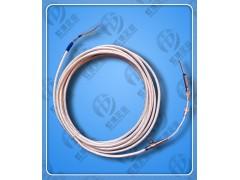高性能双支铂热电阻WZP2-3.2/150/4