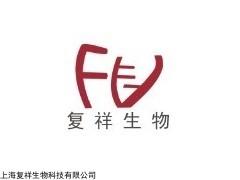 CMCC(F)98001 白色念株菌