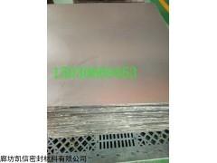 耐高温SS304增强柔性石墨板