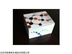 人Toll样受体6(TLR6)检测试剂盒