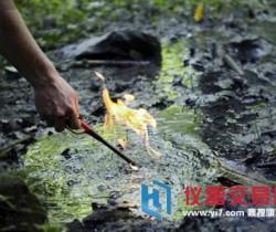 地下水污染治理刻不容缓 地下水探测方法
