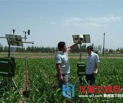 智慧农业气象服务见成效 全省已纳入服务对象1.7万个