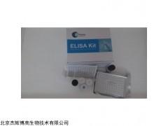 小鼠纖維蛋白原降解產物(FDP)檢測試劑盒