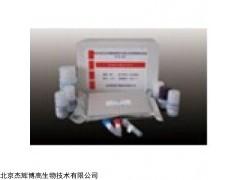 人白介素1受体辅助蛋白(IL1RAP)检测试剂盒