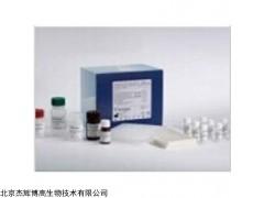 人重肽铁蛋白(FTH)检测试剂盒