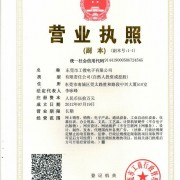 东莞市捷惠电子科技有限公司