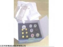 人层粘连蛋白(LN)检测试剂盒