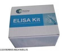 人乳脂球表皮生长因子8(MFGE8)检测试剂盒
