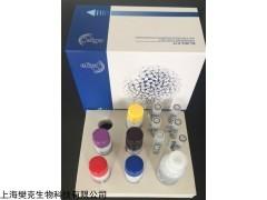 48t/96t 兔抑瘤素M(OSM)ELISA试剂盒代测