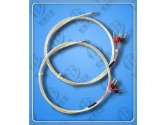 气轮机用埋入式WZPQ2-E32-15热电阻虹德生产