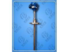 隔爆热电阻隔爆温度传感器WZP-440