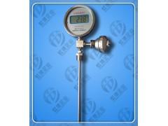 数显反应釜温度计SXM-481