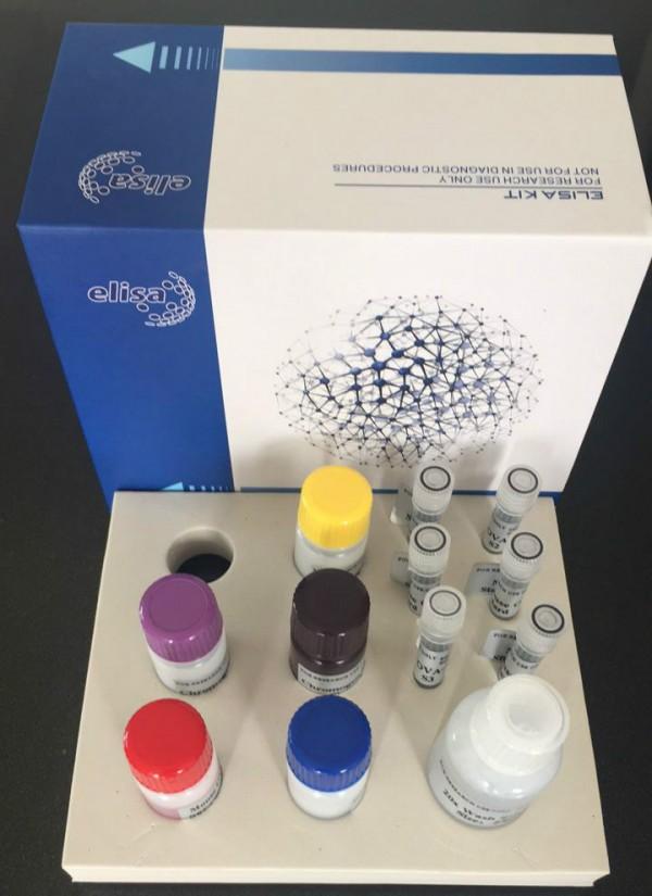 小鼠胱天蛋白酶3(CASP3)ELISA试剂盒说明书