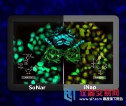 厉害!我国学者在细胞代谢检测与成像技术方面取得重要进展