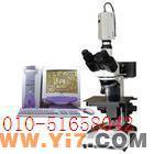 反光显微镜仪器/金相显微镜