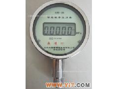智能数字压力表 YN-100 五位LCD显示
