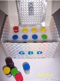 人血管内皮细胞生长因子(VEGF)ELISA kit