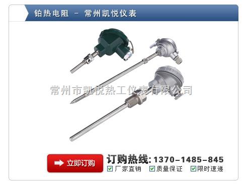 PT100热电阻供应PT100热电阻